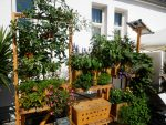 Geco-Gardens