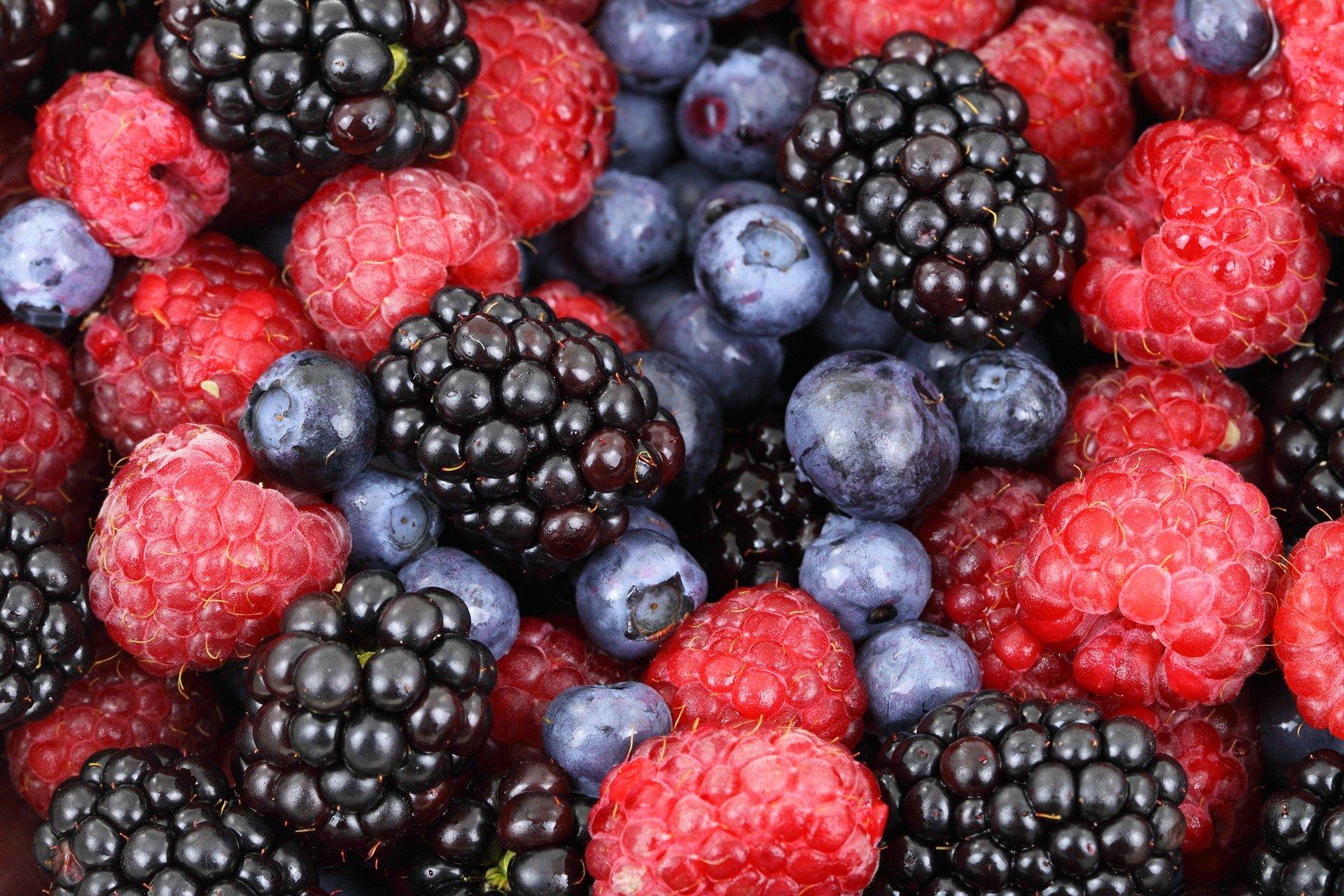Nachhaltige Ernährung & Gesundheit